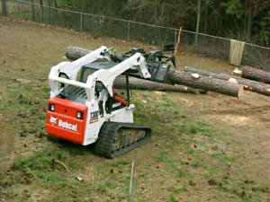 Free wood. Tree removal. Arborist reports.