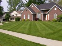 Landscaping, lawn care, Bobcat, mini-excavator, tree removal,etc
