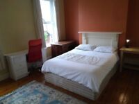 Large Double Room to let on the Upper Ormeau Road - All Bills Included - Fully Furnished