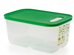intellifrais tupperware
