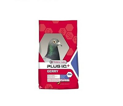 Versele Laga Gerry Plus I.C+ 20kg + 2kg FREE Racing Pigeon Feed food Corn Seed