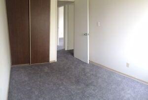 Cozy 3 BR Apartment w/ Fireplace!  Pet Friendly!! Regina Regina Area image 11