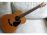 Blueridge BR-63 acoustic guitar with new hard case