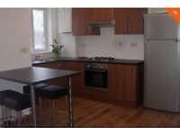 spacious 3/4 bedroom house with garden and drive way close to Middx Uni