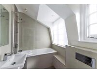 Modern Shared Apartment - Central London