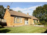 STUNNING 1 BEDROOM BUNGALOW - HUGE GARDEN - AVAILABLE NOW - NO ADMIN FEES!!!