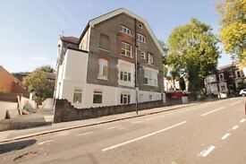 ***LOVELY 1 BEDROOM FLAT TO RENT IN CROUCH END***