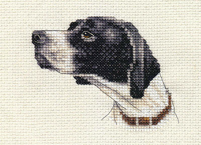 POINTER dog, puppy ~ Detailed, Full counted cross stitch kit, all materials