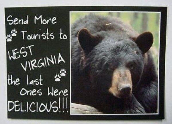 Send More Tourists To West Virginia Postcard