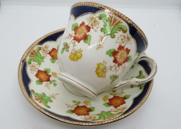 Rosina China  Vintage Fine Bone China Tea Cup & Saucer #4319