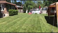 Grass Cutting  *Oshawa/Whitby/Ajax/pickering*