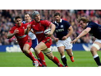 6 Wales v Scotland Rugby tickets six Nations in L27 block