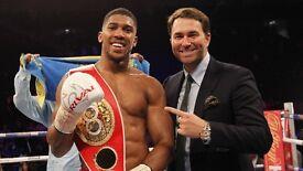 Antony Joshua v Eric Molina World Championship boxing.