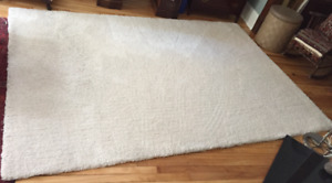 Large, Thick Pile Area Rug