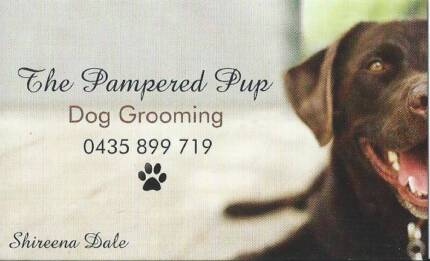 Frankston area vic pet services gumtree australia free local the pampered pup dog grooming solutioingenieria Gallery