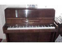 Piano, Kelman tropical upright