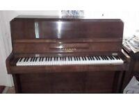 Piano, Kelman Tropical upright piano