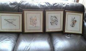 Set of 4 framed musical instruments pictures