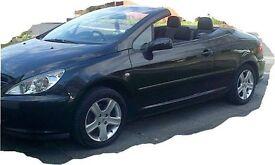 307cc Black