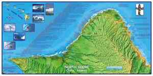 Oahu-North-Shore-Surfing-Hawaii-Map-Poster-by-Franko-Maps