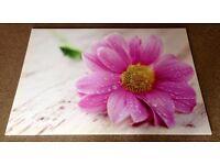 Large Pink Flower / Gerbera Print, Picture, Wall Art
