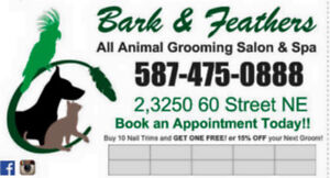 Weekend Appts Available Dog and Cat Grooming
