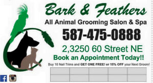 Need a WEEKEND APPT!! Book your dog or cat groom today!