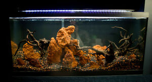 30/20 gallon planted/axolotl great price