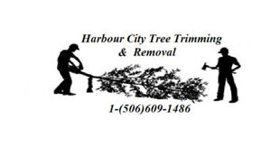 Harbour City Tree Trimming