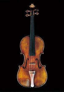 Violin Lessons South Brisbane Brisbane South West Preview