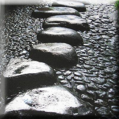 Japanese Garden Book - Stone Paving Path Design Zen Landscape Architecture Rocks ()