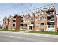 Spacious 2 Bedroom Apartment - Heart of Orleans