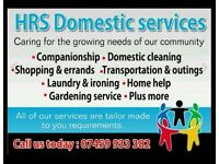 Domestic cleaning & home help services