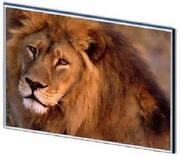 MacBook White LCD