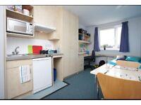 Studio Room at Broadgate Park