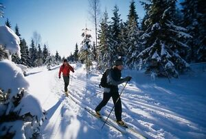 WANTED: Cross Country Skis, Boots and Poles