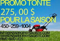 Promotion du mois $275.00 Tonte de Gazon 4502591004