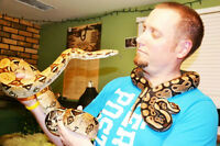 Sydney Snake Adventures.....Reptile/Exotic animal shows