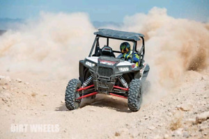 Looking for a rhino or rzr