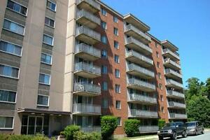 1 Bedroom unit / Lease Takeover / 7 Parker St, Dartmouth, NS