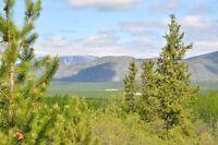 15 Acres raw land Ibex valley area