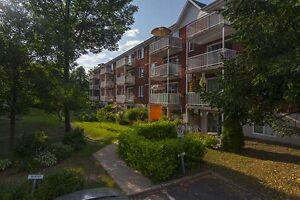 5 1/2 disponible pour juillet à Ste-Foy (Secteur du Campanile) Québec City Québec image 4