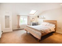 Large double room to rent!