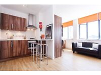 Luxury studio flat for students- short term or long term