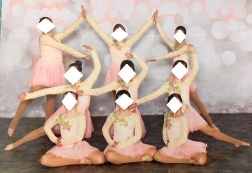 Girls Theater Ballet Lyrical Pink Ivory Lace TuTu Dance Costume Large Solo