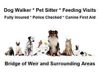 Dog Walker / Pet Sitter in Bridge of Weir