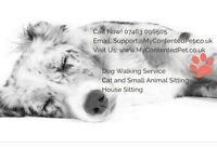 My Contented Pet: Dog Walkers & Pet Sitters. Experienced, Fully Insured, Trustworthy. Free Consult