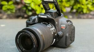 Looking to borrow a decent dslr for a trip