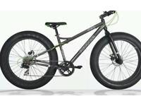 7 speed Pirahna Fatfish Mountain bike