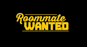 Looking for roommate in Brampton/Mississauga area